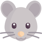 The Rat: what to expect in 2019