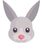 The Rabbit: what to expect in 2019?