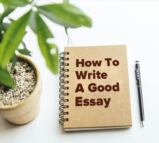 How to Write a Hook for an Essay: Catchy Ideas with Examples